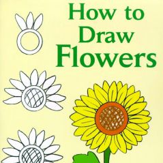 【国外资源】【美术】Draw_-_How_to_Draw_Flowers